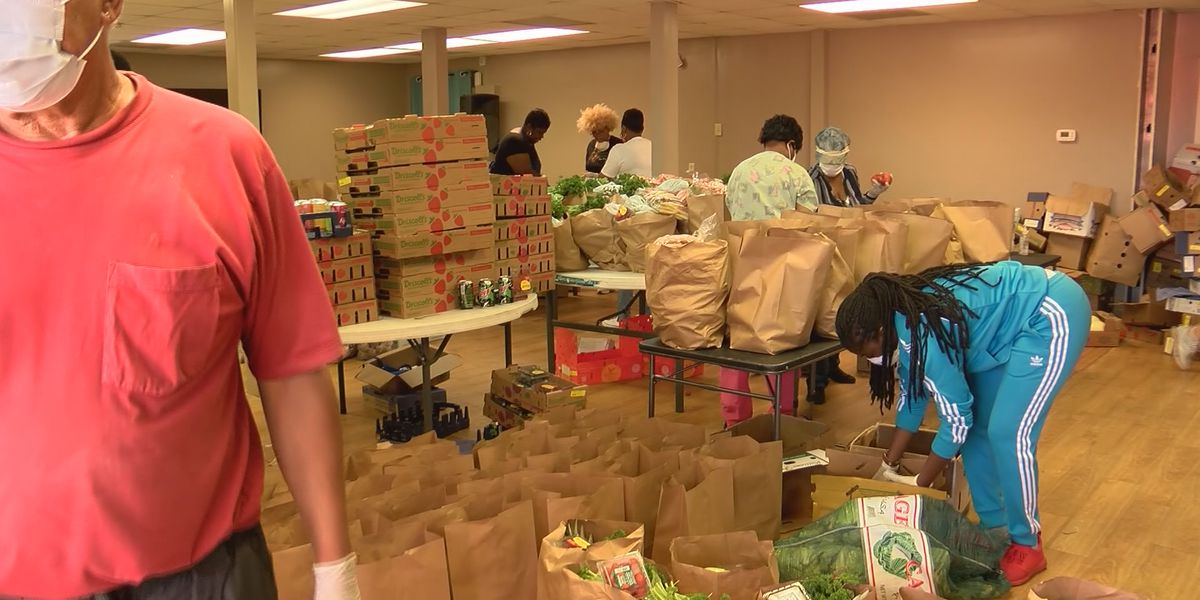 Hundreds receive free groceries at Feed the Hungry event