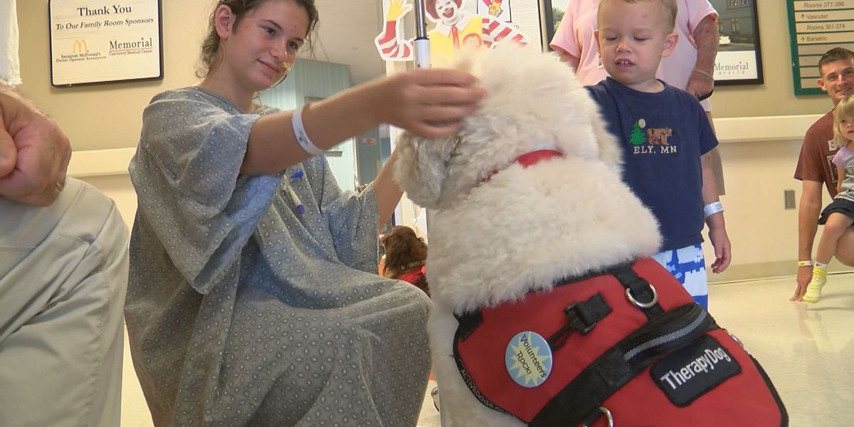 Good News: Dogs visit Children's Hospital