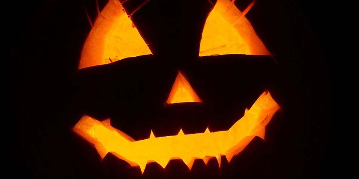 Effingham Co. Sheriff's Office to round up sex offenders on Halloween night