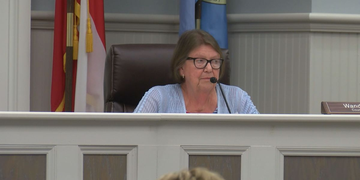 Current Tybee councilman enters name into mayoral race