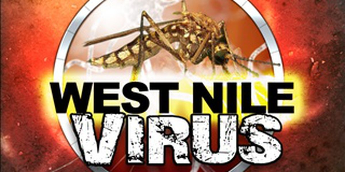West Nile virus confirmed in Northampton County for 2019