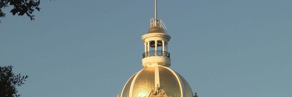 Savannah city council getting update on budget Thursday