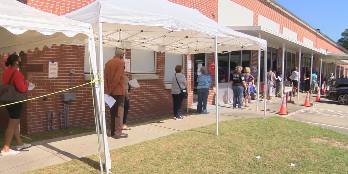 Election officials hold call promoting early voting