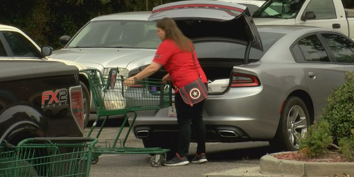 Plastic bag ban to begin Nov. 1 in Beaufort County