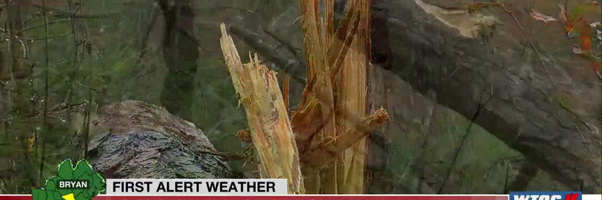 Morning storm leaves a mess in Bryan, Bulloch, Effingham counties