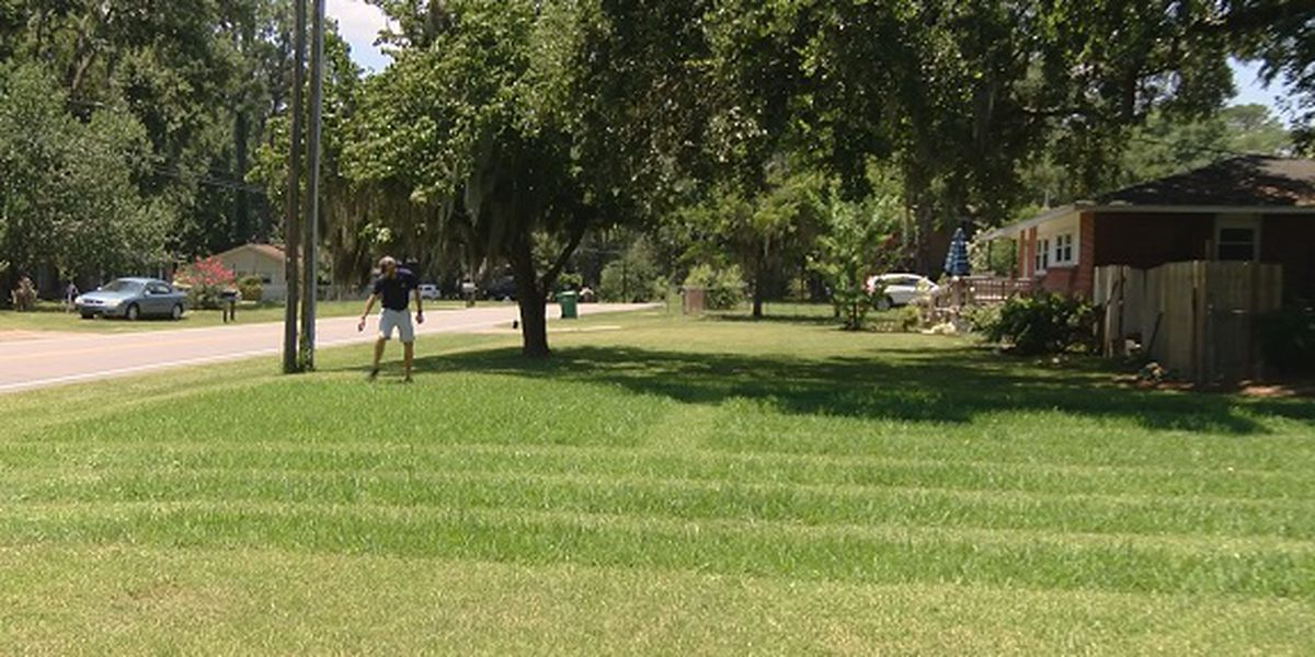Beaufort man mows shape of American Flag into lawn