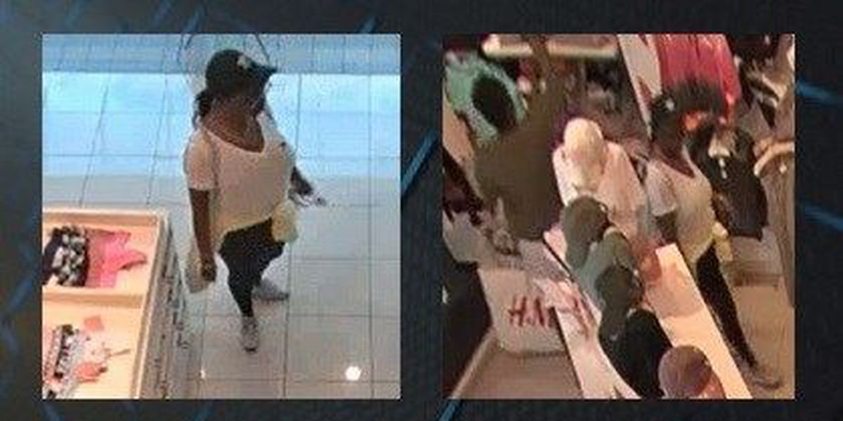 Savannah PD looking for 2 female shoplifting suspects