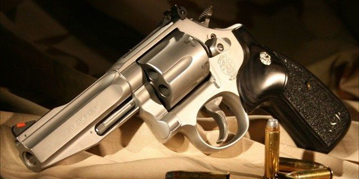 SC bill would bar abusers from owning guns