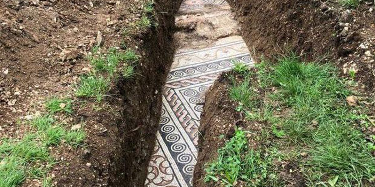 Perfectly preserved ancient Roman mosaic floor unearthed beneath Italian vineyard