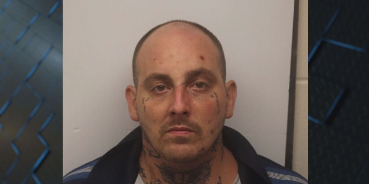 CNT arrests man on trafficking methamphetamine charges on Willowbrook Dr.