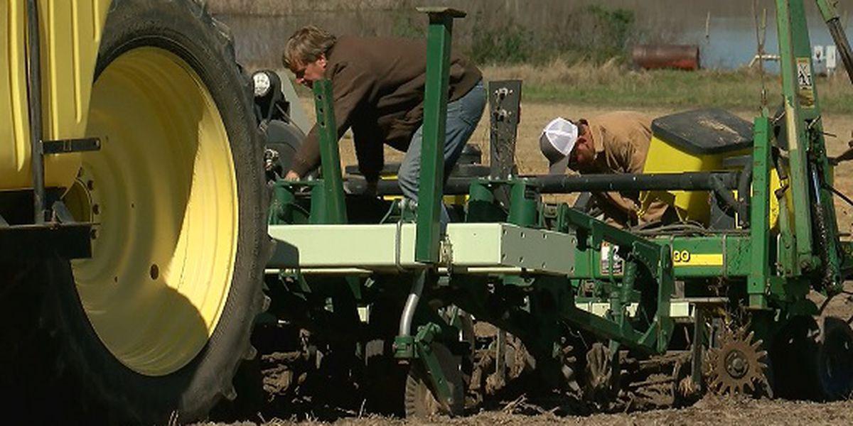 Proud to be a GA Farmer: Prepping peanut fields