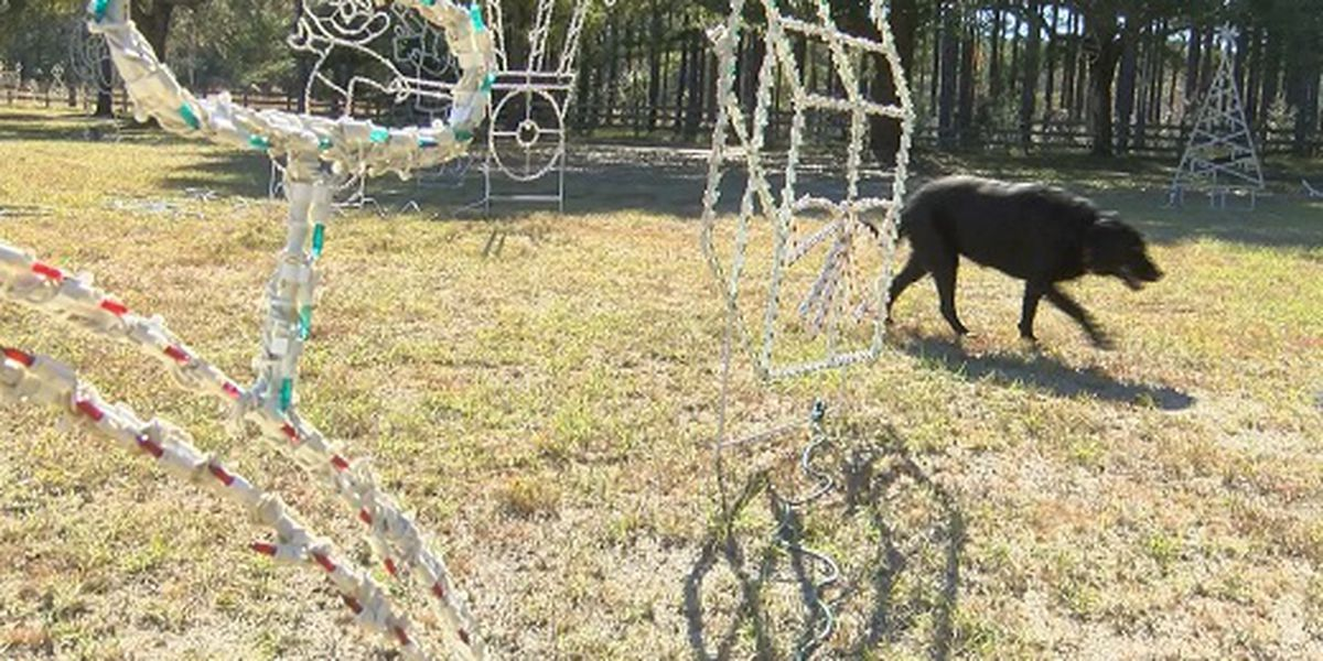 Stolen Christmas decorations found in another yard in Walterboro, SC