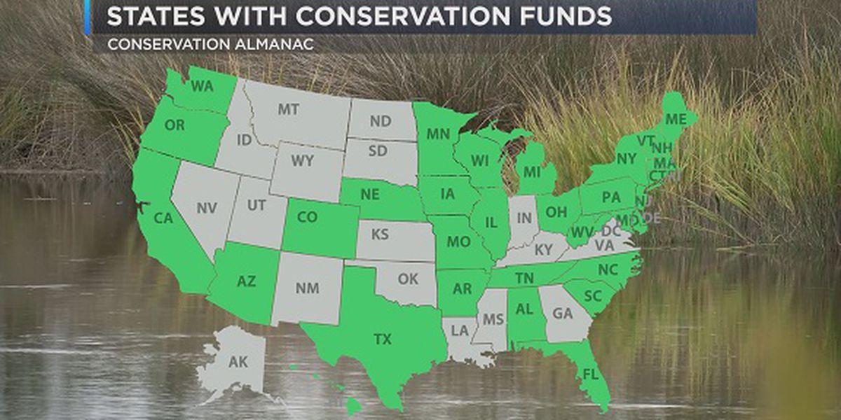 What is Georgia's Outdoor Stewardship Amendment?