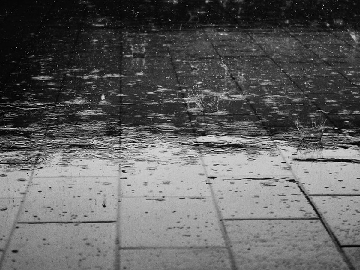 First Alert Weather Day: Rain, periodically heavy, lingers