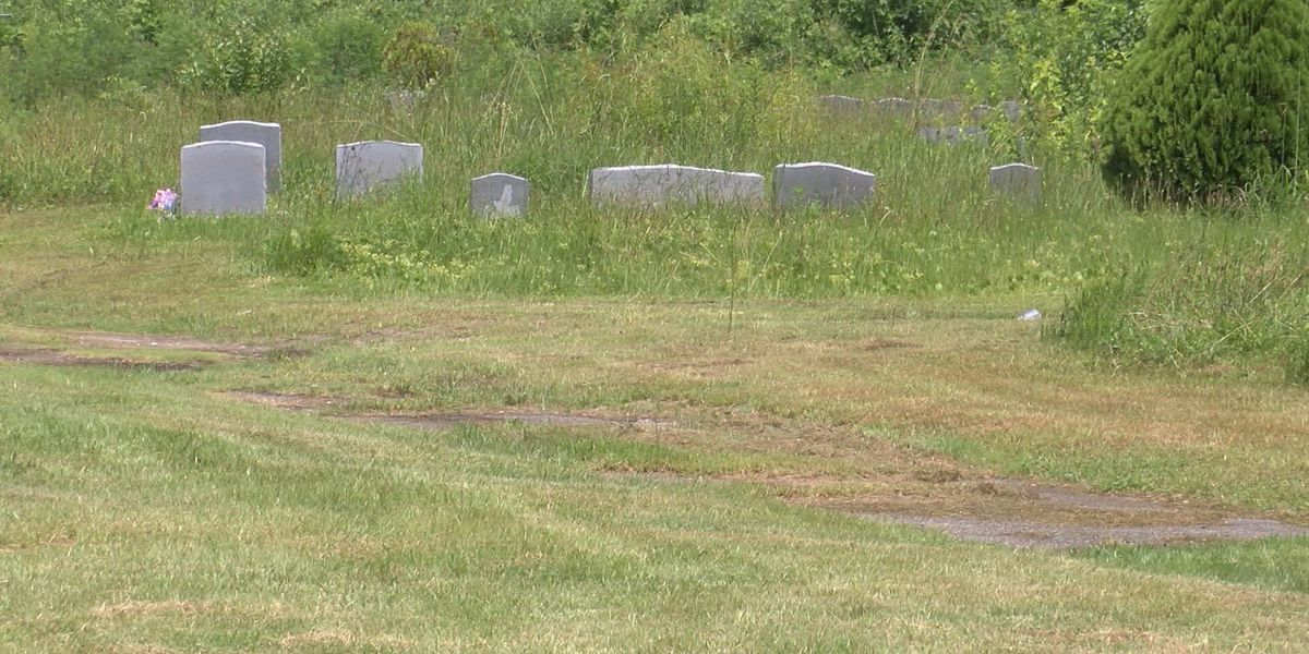 A lot of cleanup progress made at Evergreen Cemetery last fall undone