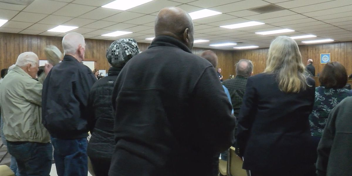 Port Wentworth holds first special called meeting with new council