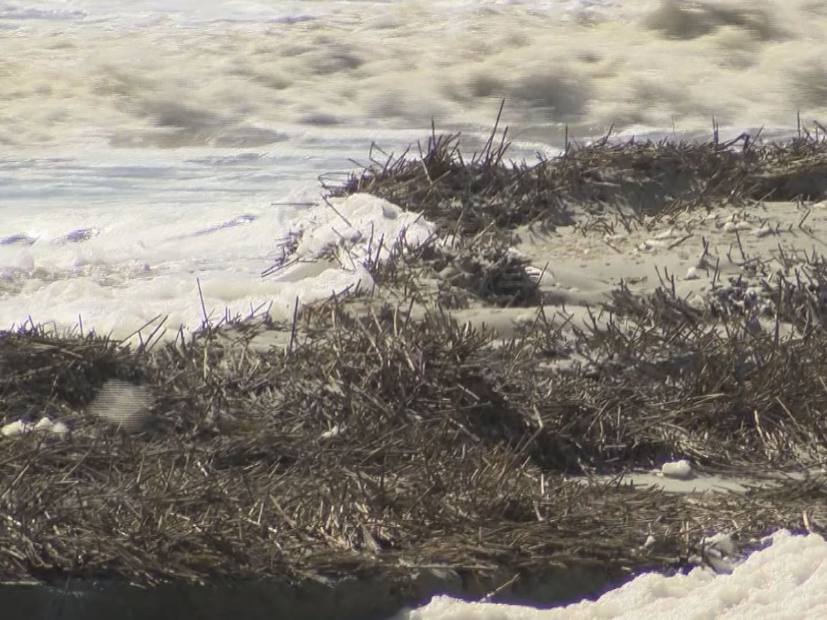 High tides causing some beach erosion on Tybee Island