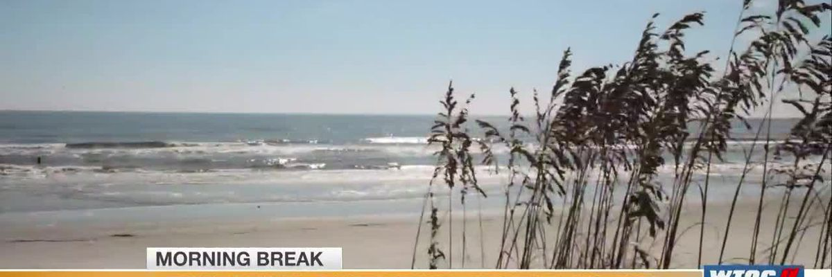 Exploring Our Parks: Sapelo Island in McIntosh County