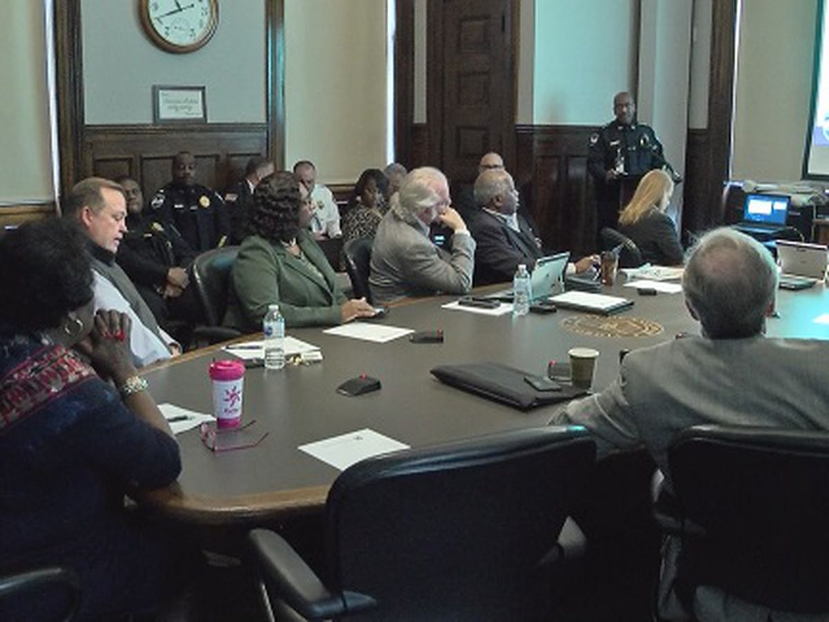 Savannah City Council reviews 2018 crime stats