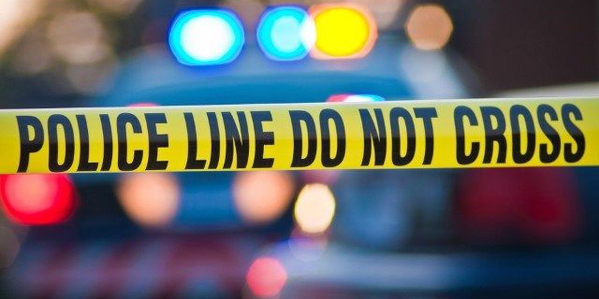 Police investigate fatal shooting at mobile home park in Walthourville