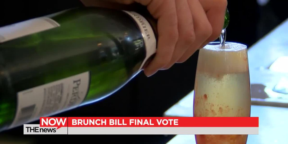 Pre-Thanksgiving Savannah city council meeting could bring decision on city's brunch bill