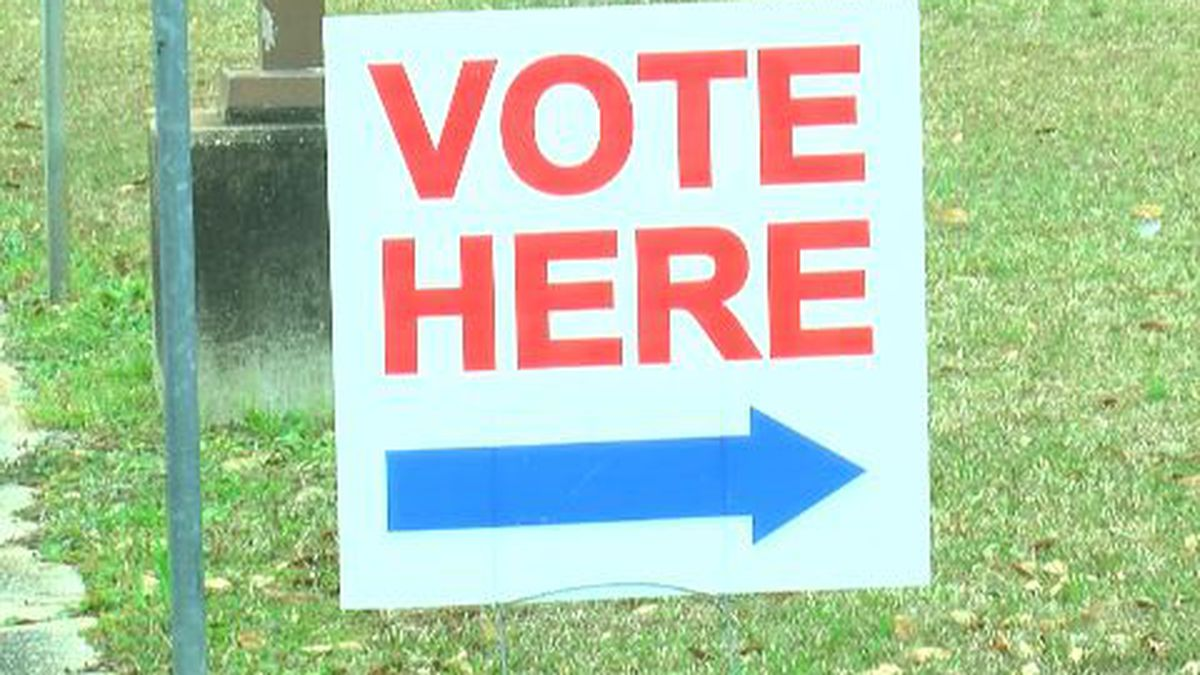 Georgia voters to be mailed absentee ballot request form