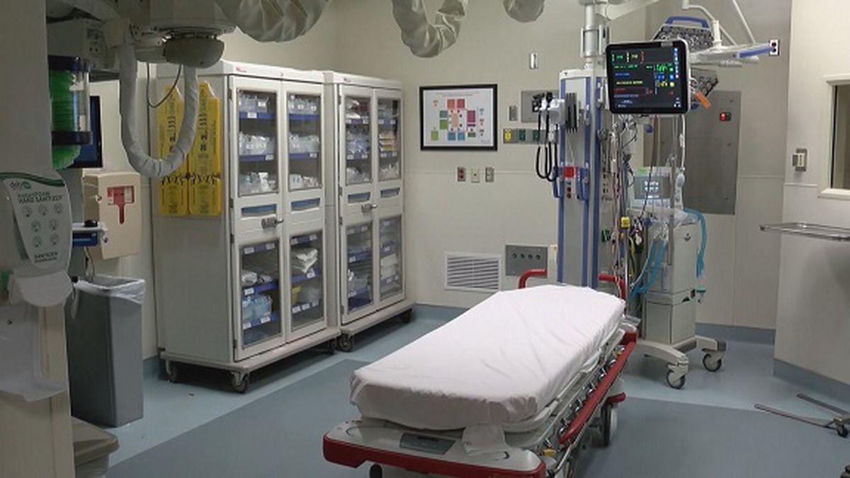 Local Emergency Rooms Serve Influx Patients In Hallways