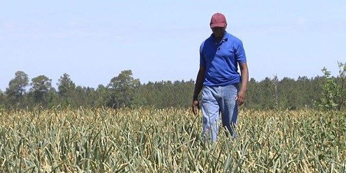 Proud to be a GA Farmer: Sam Baker