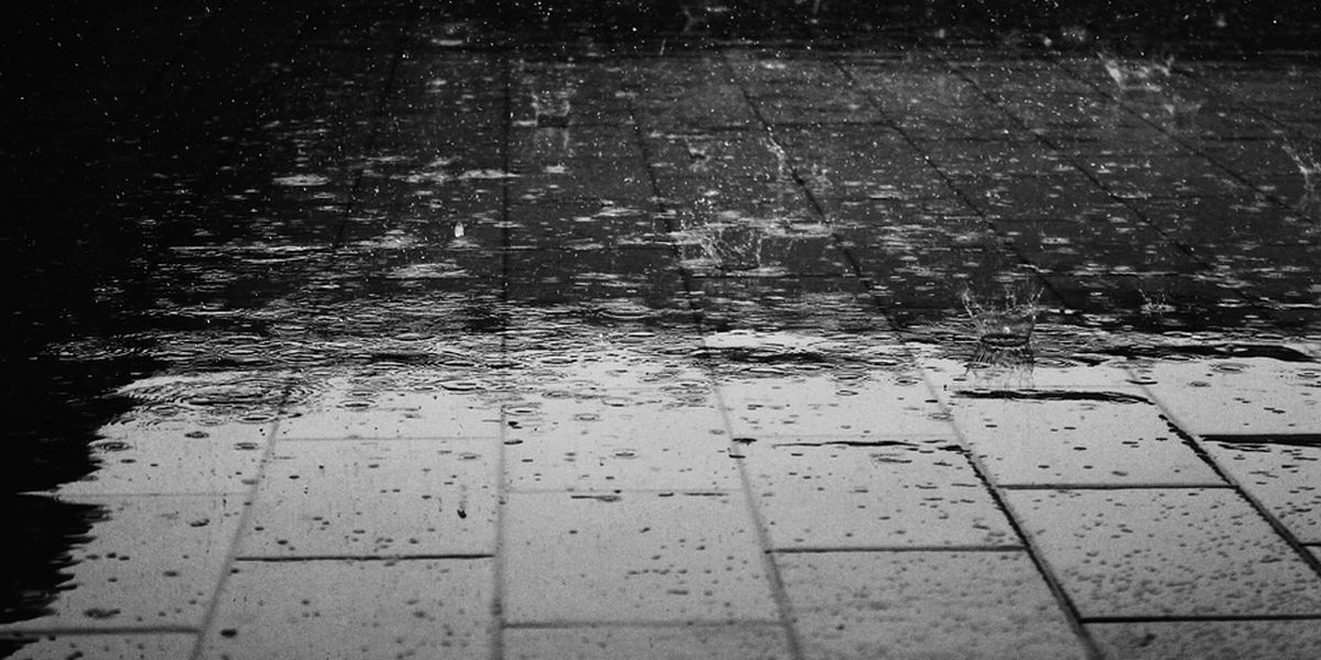 First Alert Weather Day: Heavy rain moves in