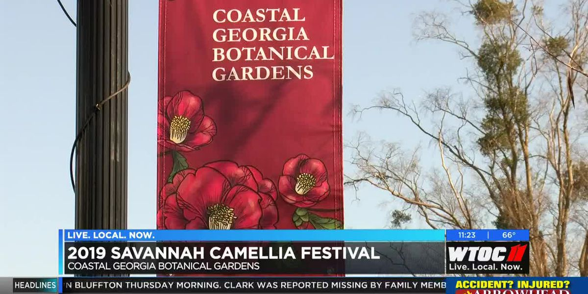2019 Camellia Festival held in Savannah