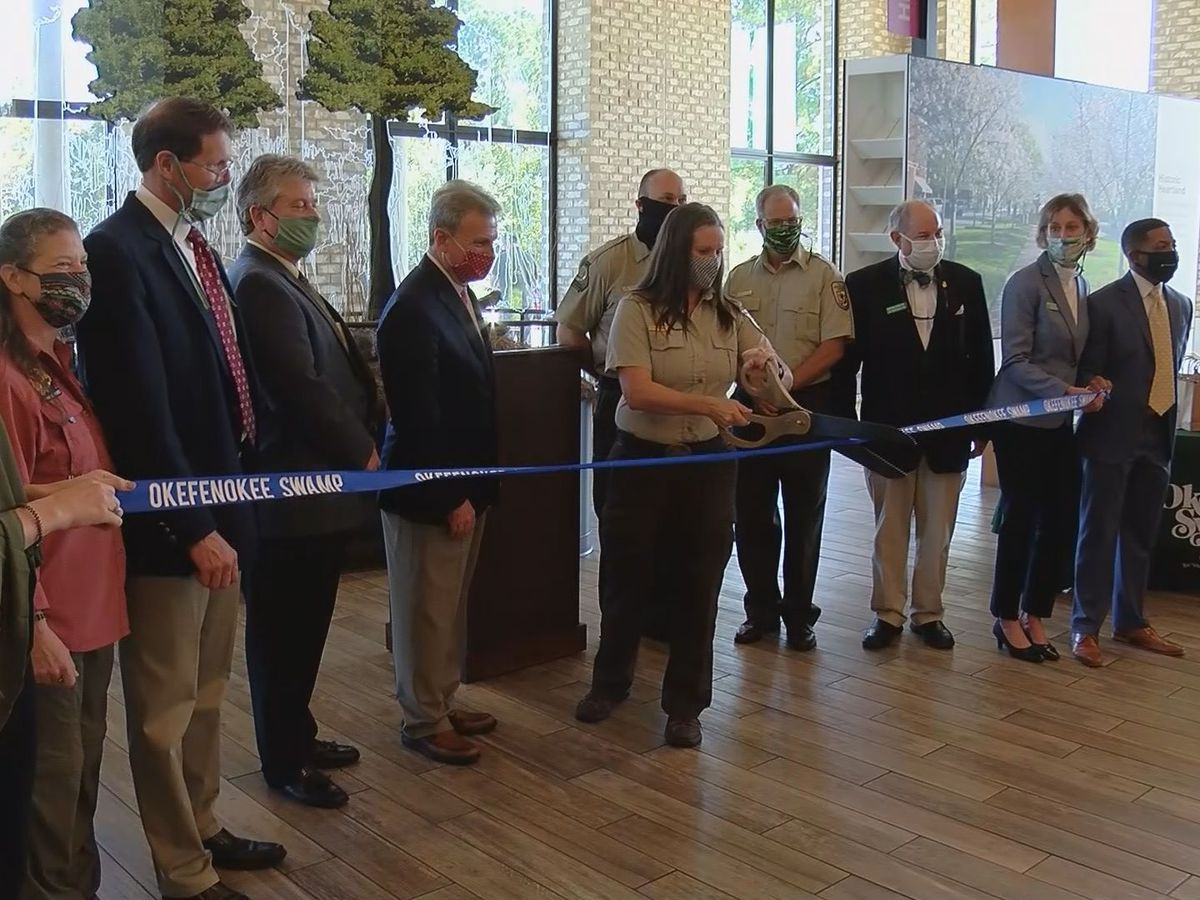New Okefenokee Swamp exhibit at Georgia Welcome Center