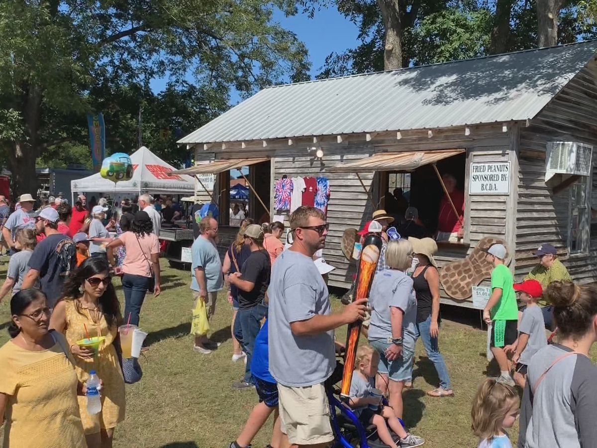 30th Brooklet Peanut Festival draws thousands