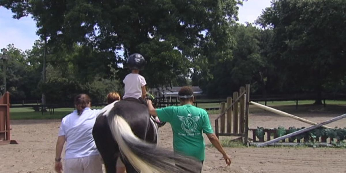 Community Champions: Pegasus Riding Camp