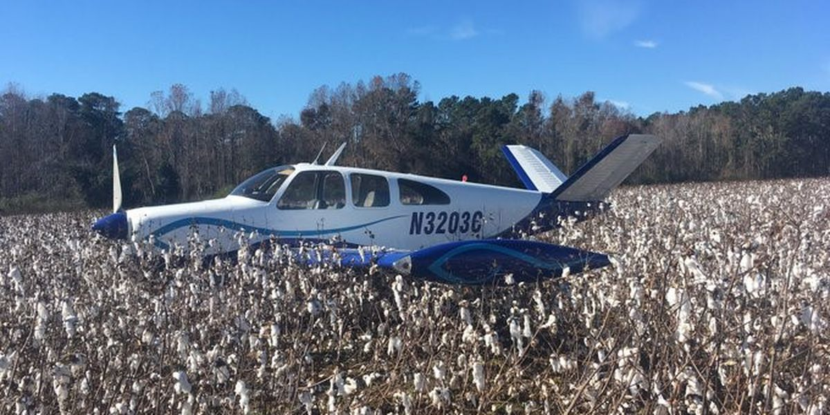 Small plane lands in Candler County cotton field