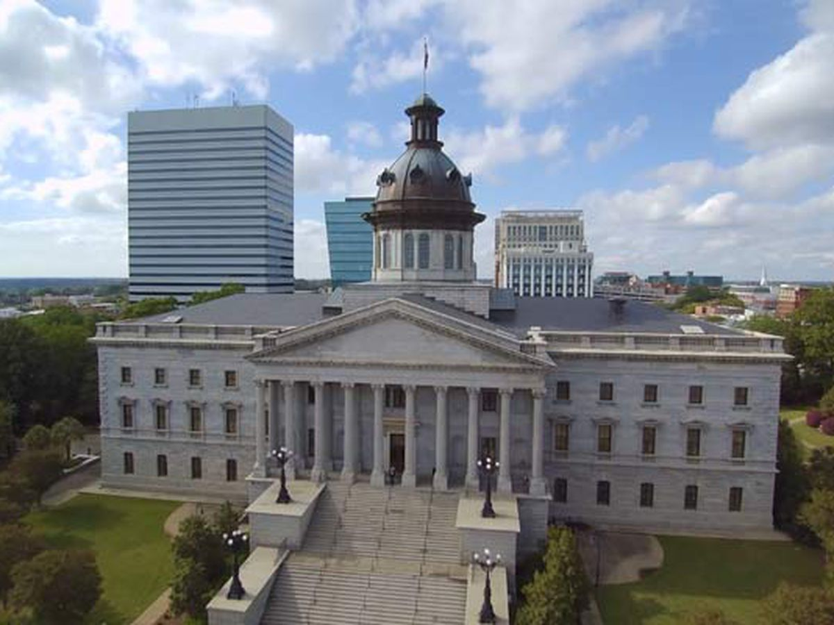 SC House and Senate OK suicide hotline info on school IDs