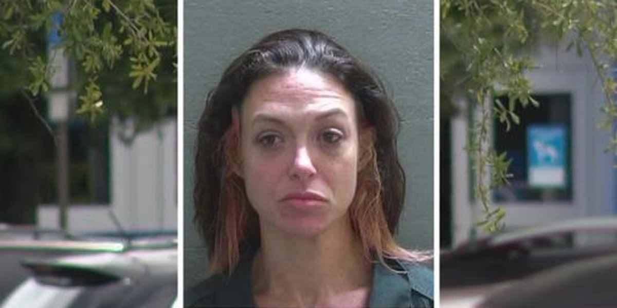 Fla. woman charged with leaving dog in hot car