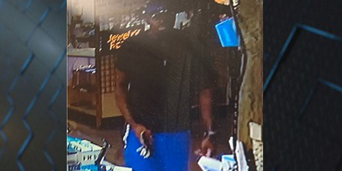 Chatham County Police working to identify cellphone thief