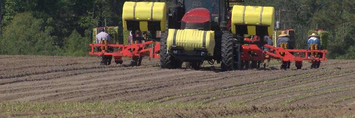 Proud to be a Farmer: Daniel Johnson