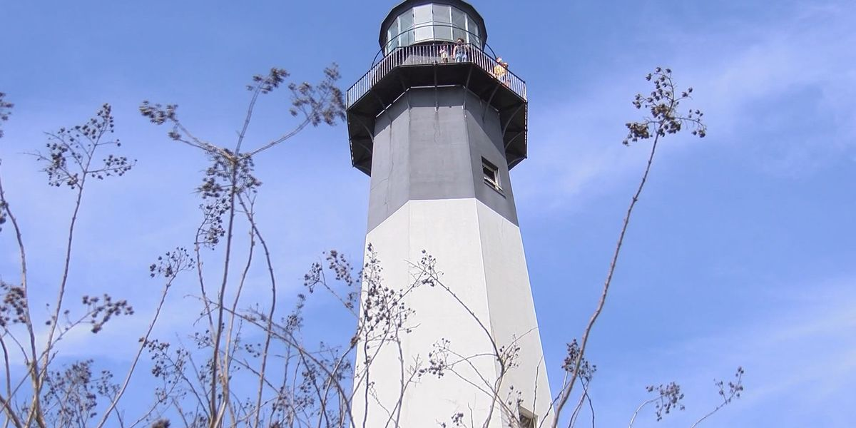 Tybee Island Historical Society hopes to gain support for proposed lighthouse license plate