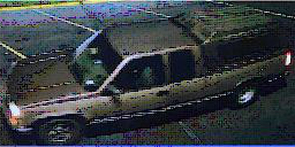 Fire department trying to identify people in vehicle that may have information on Ogeechee Rd. fire
