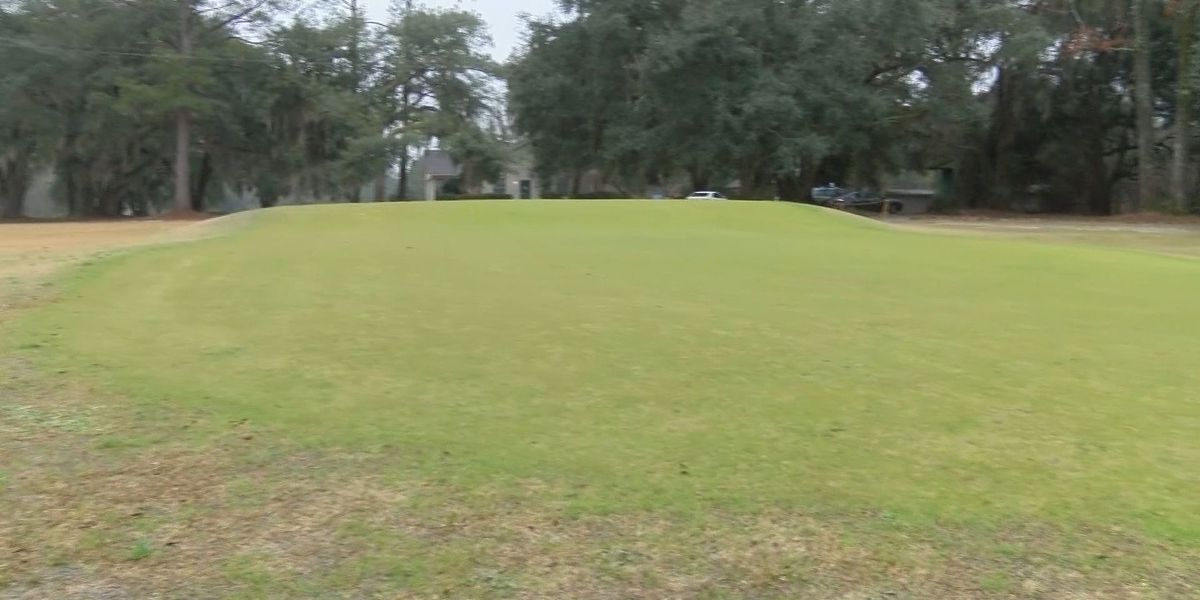 Community Champions: Congaree Foundation creating access to golf for Jasper Co. kids