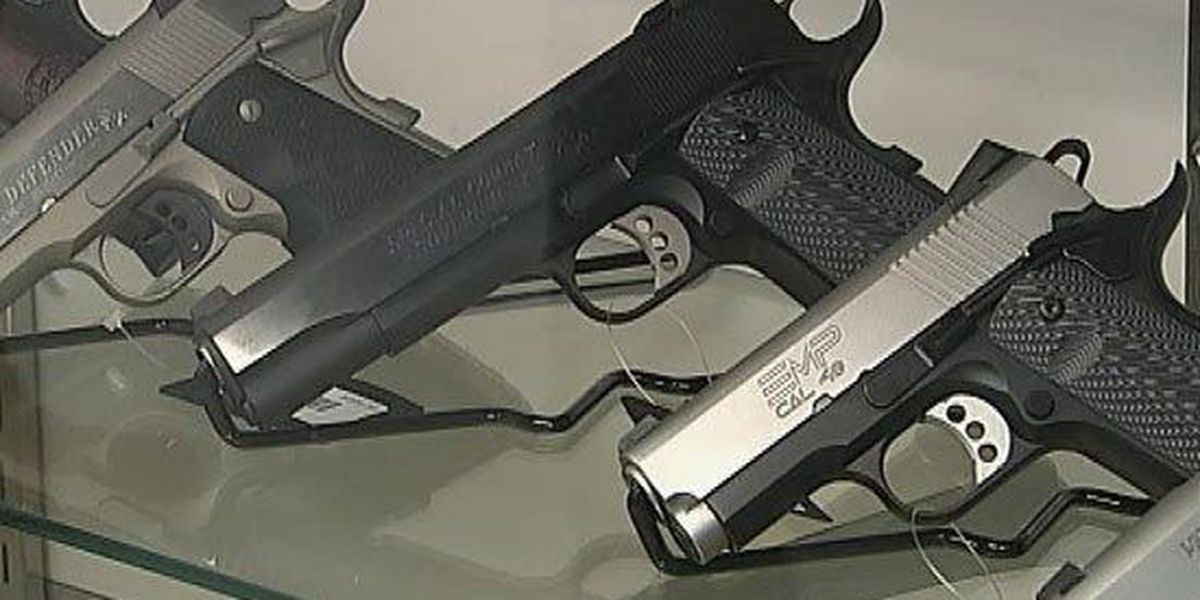 Georgia school system will allow employees to carry guns