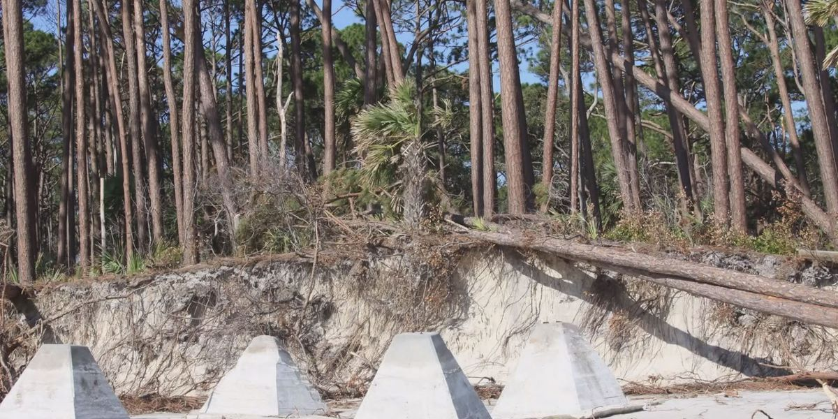 Hunting Island State Park slowly recovering after Hurricane Matthew