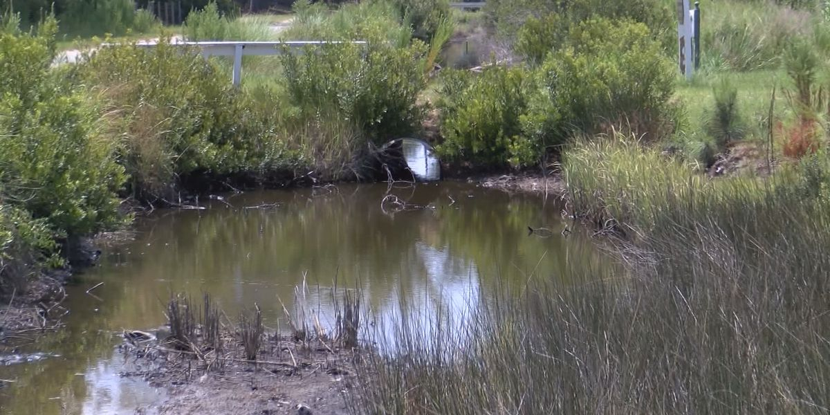 TSPLOST funds to help with McIntosh Co. drainage issues