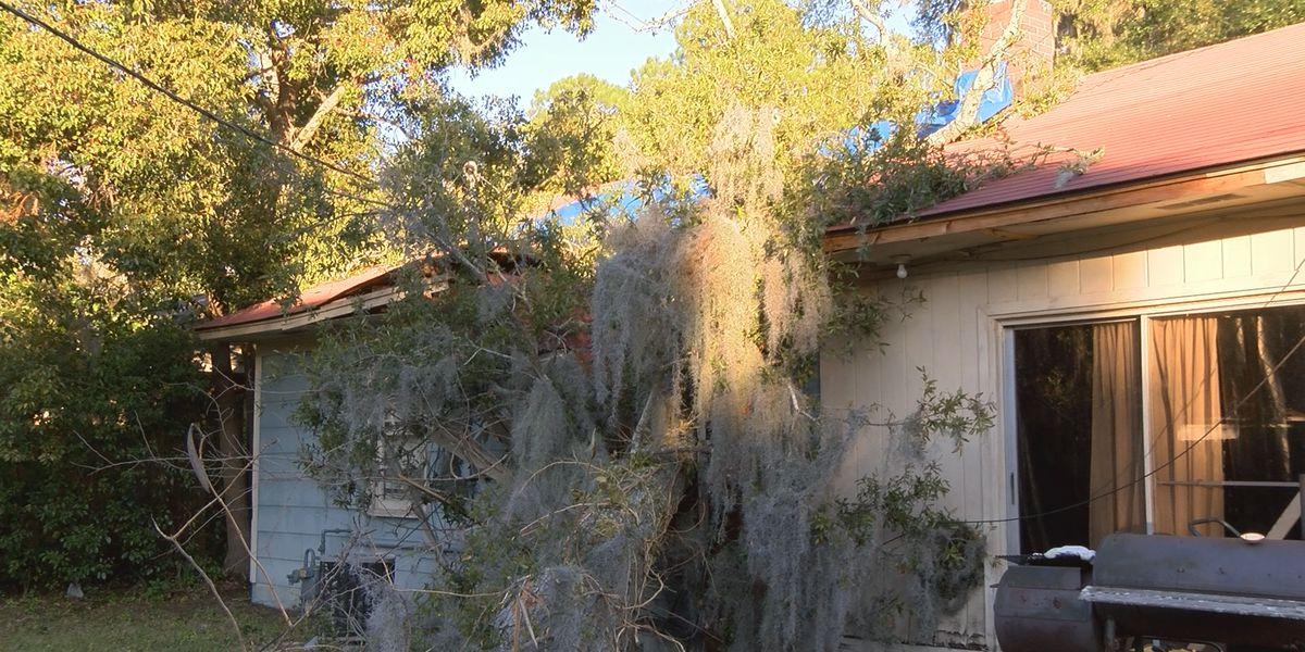 Storm damage crashes family's holiday