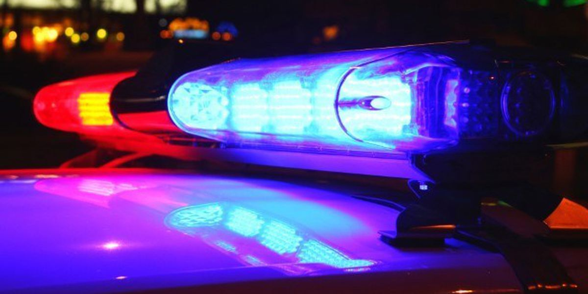 Statesboro Police arrest man wanted in Hinesville child molestation investigation