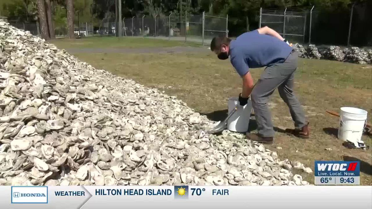 Savannah State needs volunteers to bag oyster shells for research reef
