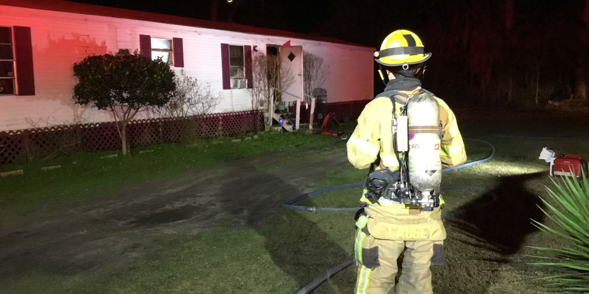 Burton Fire Department rescues two dogs from house fire