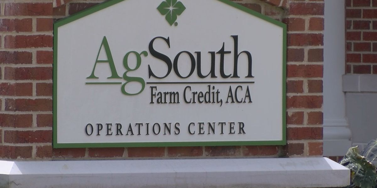 AgSouth Farm Credit helping farmers hit hard by the COVID-19 pandemic