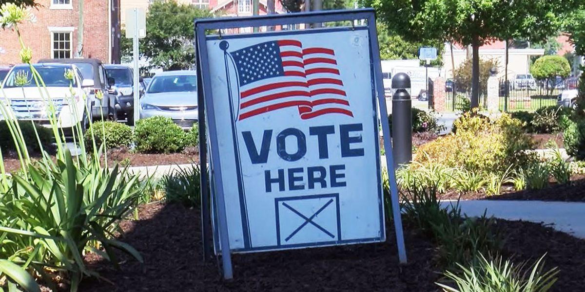 Voter registration deadline in Ga. is Monday